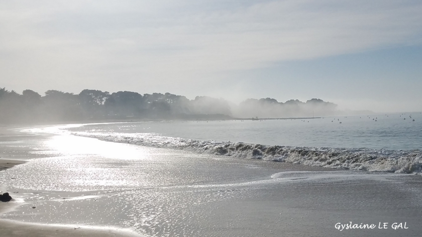 Mer et brouillard